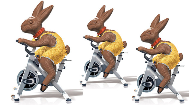 Image result for fitness rabbit